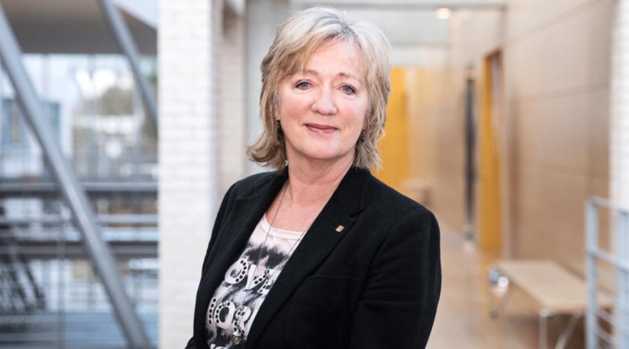 Professor og viserektor ved NTNU i Ålesund, Annik Magerholm Fet.